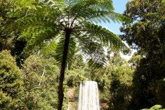 ミラミラの滝